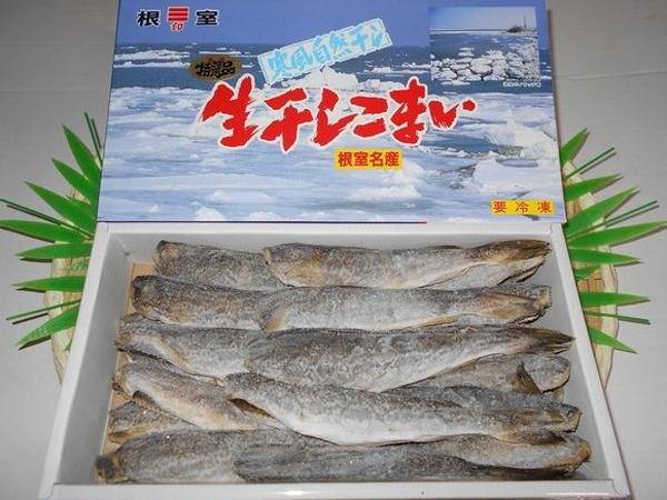 hoshizakana0001